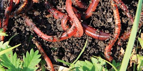 Worm farming tickets
