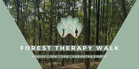 Forest Therapy - Mindfulness in Karawatha Forest tickets