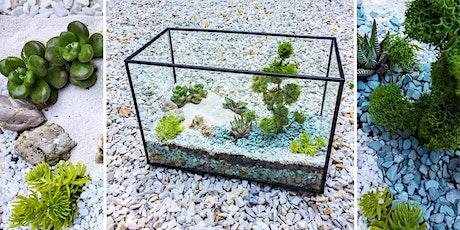 Rectangular terrarium workshop tickets