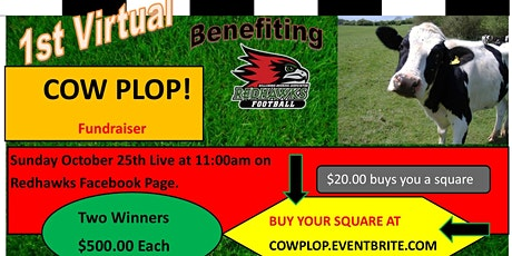 1st Virtual Cow Plop tickets