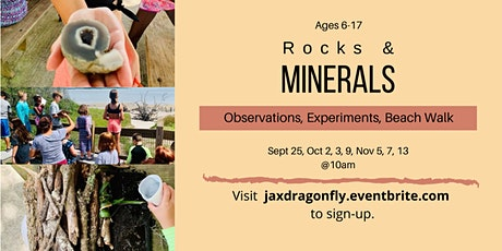 Rocks & Minerals   Jax Dragonfly Academy tickets