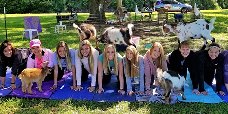 SMALL GROUP - Goat Yoga Katy in the Country!!!  12 or less in a class :) tickets