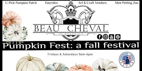 Pumpkin Fest: a fall festival tickets