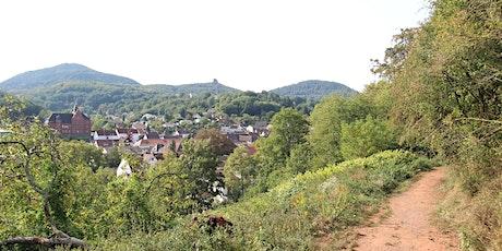 Single-Wanderung Annweiler - Trifels (25 - 45) Tickets