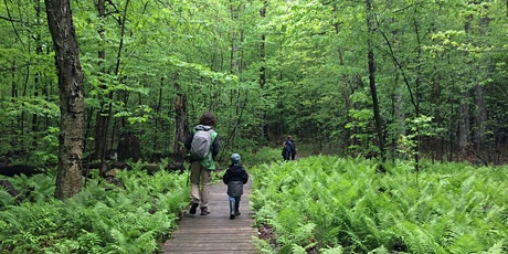 La forêt enchantée billets