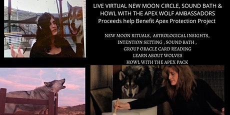 Virtual New Moon Circle, Sound Bath & Howl with the Apex Wolf Ambassadors tickets