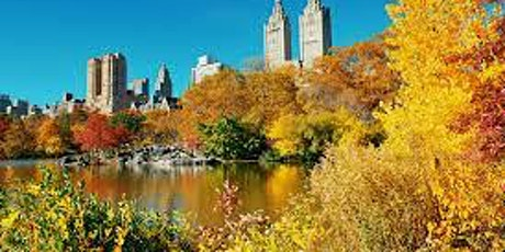 Social Distancing Members & Friends Central Park History Tour tickets