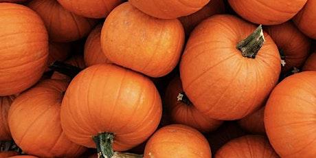 Pumpkin Cranberry Tiramisu AND  Pumpkin Ricotta Cookies tickets