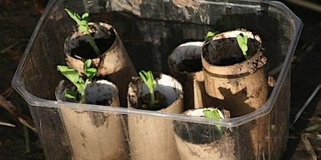 Virtual Workshop - Plant Propagation tickets