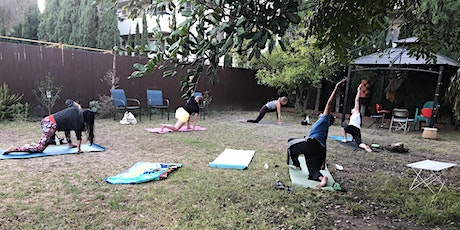 Cat Yoga & A Cocktail -- An Outdoor, Socially-Distanced Event tickets