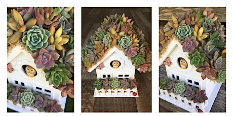 Succulent Bird House tickets