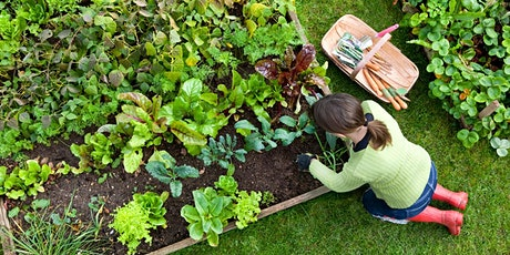 'Build resilience through gardening' with Toni Salter, The Veggie Lady tickets