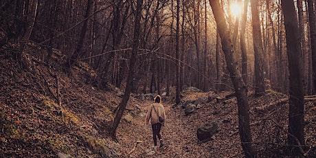 Forest Bathing & Walking Meditation tickets
