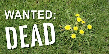 Garden Talks - Wanted:Dead (Dealing With Weeds in Lawns) tickets