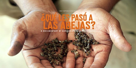 What happened to the bees? / ¿Qué les pasó a las abejas? tickets