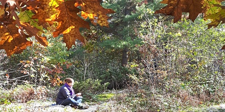 Fall Colours on the Crazy Horse Trail - Hike & Forest Immersion tickets