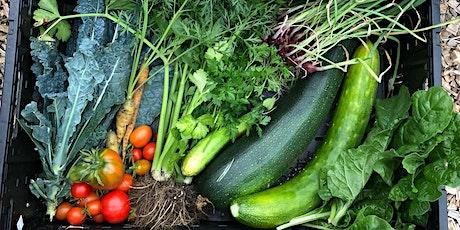 Market garden October Harvest tickets