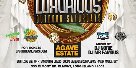 Agave On Saturday Luxurious Social Distanced Dining Experience tickets