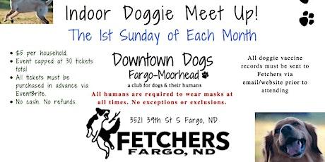 Indoor Doggie Meet Up at Fetchers! tickets