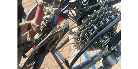 The Nitty-Gritty: Cleaning Your Bike
