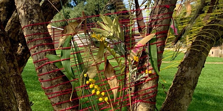 Come and try Nature Weaving in Belair National Park tickets