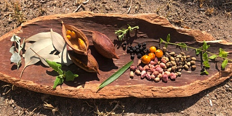 Edible Native Plants and their Uses with Adam Shipp tickets