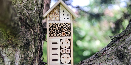 Bee & Insect Hotel Making Workshop tickets