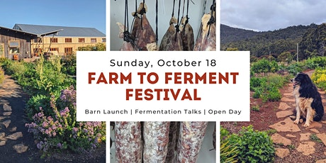 Farm to Ferment Festival tickets