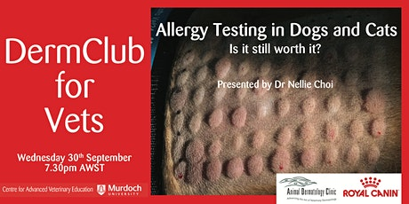 DermClub for Vets: Allergy testing dogs and cats: is it still worth it? tickets
