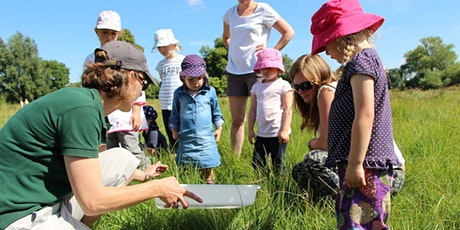 Wilder Schools- Improving your school grounds for wildlife and learning tickets