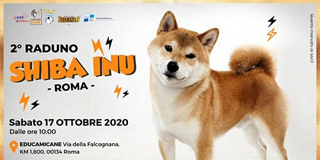 2° Raduno Shiba Inu Roma biglietti
