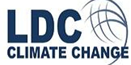 Initiatives to deliver the LDC Vision for Net-Zero & Climate Resilience tickets