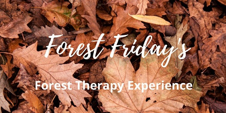 Autumn Forest Friday's - Woodland Wellness tickets