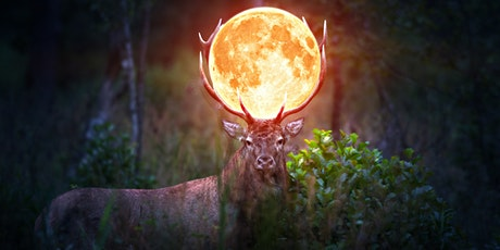Full Moon In Aries Virtual Ritual tickets