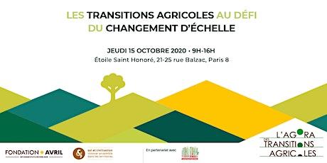 Les transitions agricoles au défi du changement d'échelle billets