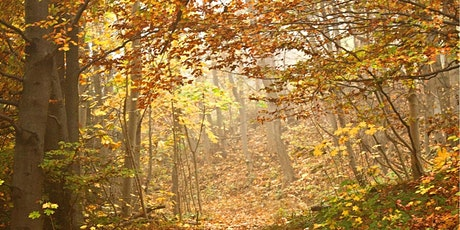 Autumn Yoga & Hike at French Creek State Park tickets