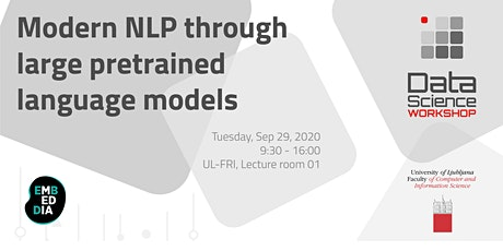 Modern NLP through large pretrained language models tickets