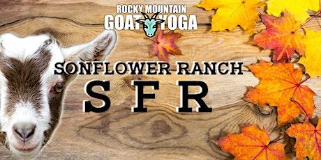 Goat Yoga - October 3rd (SonFlower Ranch) tickets