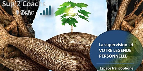 Conférence : La supervision en visio et en groupe francophone billets
