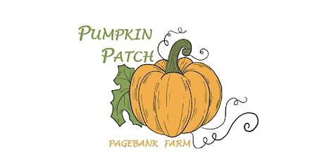 Pagebank Pumpkin  Patch tickets