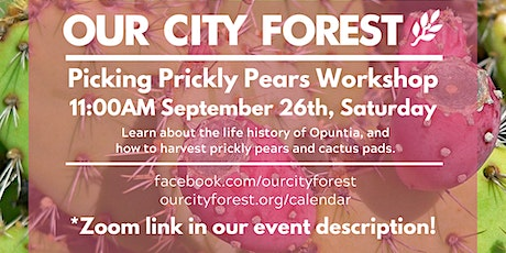 Picking Prickly Pears! tickets