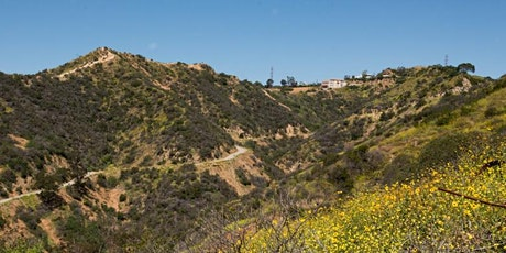 Runyon Canyon Hike with F45 Training Hollywood tickets