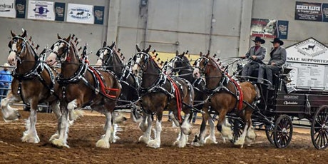 Wild West Classic Six Horse Hitch Shootout 2020- THURSDAY  EVENTS tickets