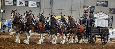 Wild West Classic Six Horse Hitch Shootout 2020- SATURDAY  EVENTS tickets