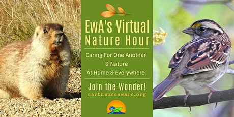EwA Virtual Nature Hour tickets