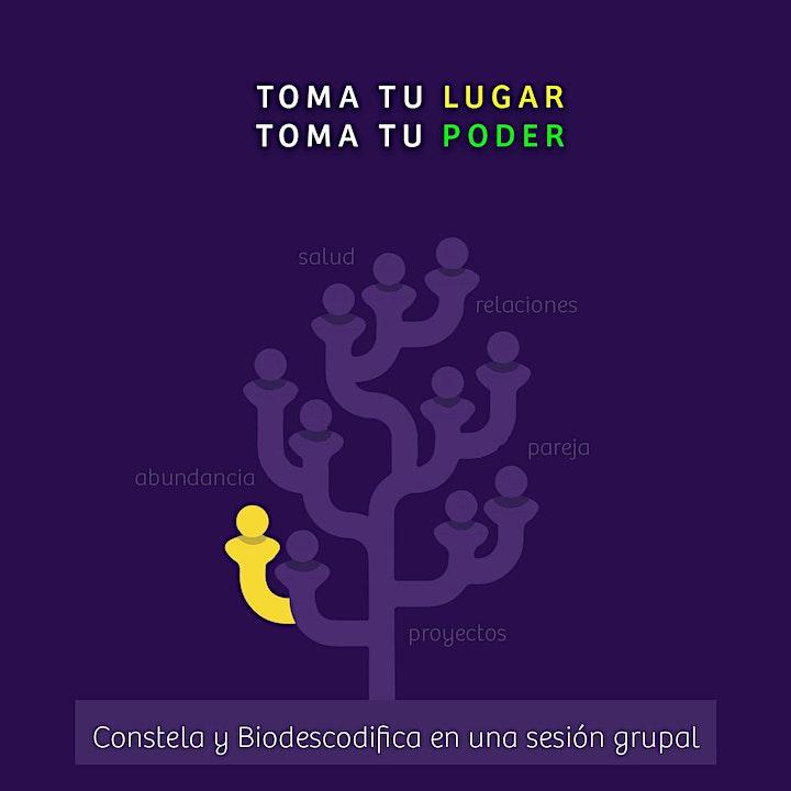 Imagen de Constelaciones Familiares + Biodescodificación