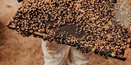 Basic Beekeeping tickets