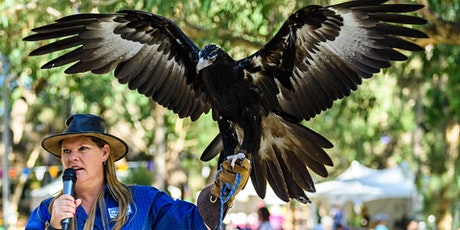 Introduction to Raptors School Holiday Event - Mundaring tickets