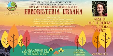 Corso pratico di Erboristeria Urbana a Roma biglietti