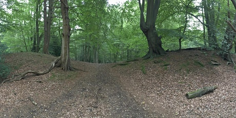 Epping Forest's Iron Age hillfort: an Ambresbury Banks guided walk tickets